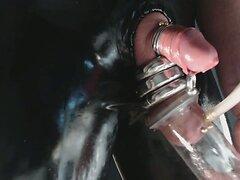 cock larex piercing cockRinge penisRringe
