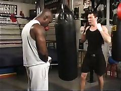 Hot black and white guys fuck hard after boxing